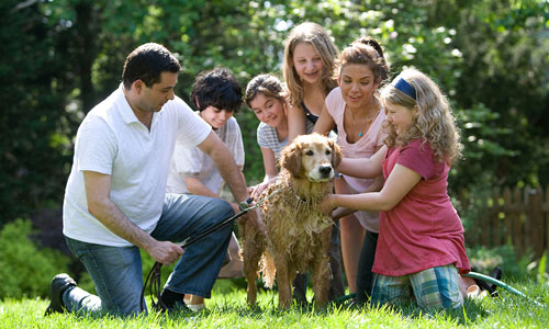 A family with a dog